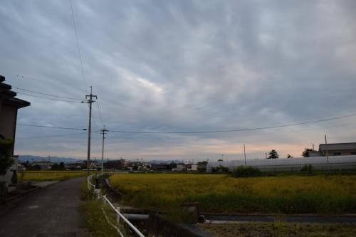 DSC_0084